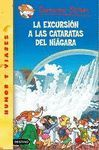 LA EXCURSION A LAS CATARATAS DEL NIAGARA N46