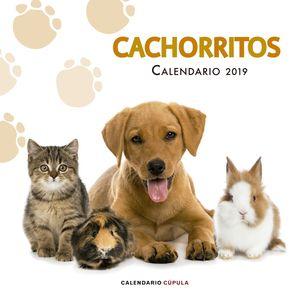 CALENARIO CACHORRITOS 2019