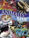 ENCICLOPEDIA DE LOS ANIMALES DEL MAR